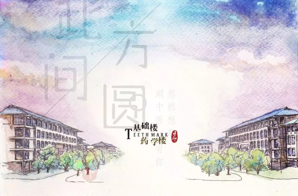 剁手不如牵手——湖北中医药大学广播台双11特别节目